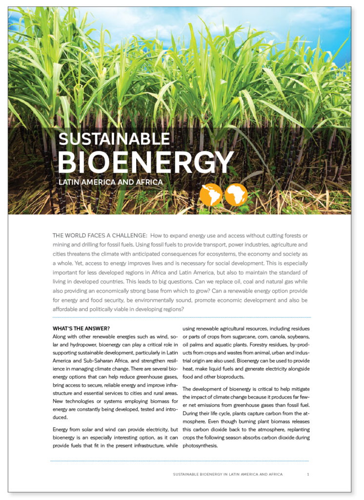 Front Cover of Sustainable Bio Energy